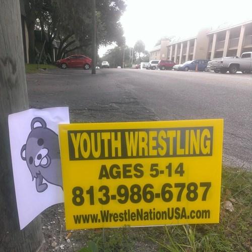 pedobear,funny,wrestling