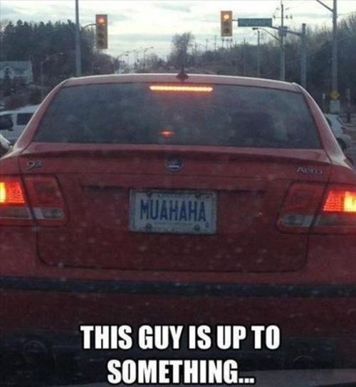 license plates up to something - 7817991936