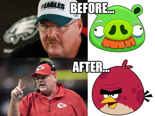 angry birds,sports,andy reid