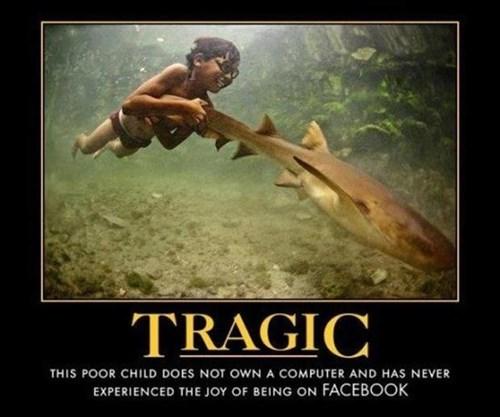 life wtf kid facebook shark funny - 7819758592