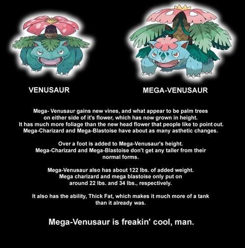 mega venusaur venusaur - 7819818752