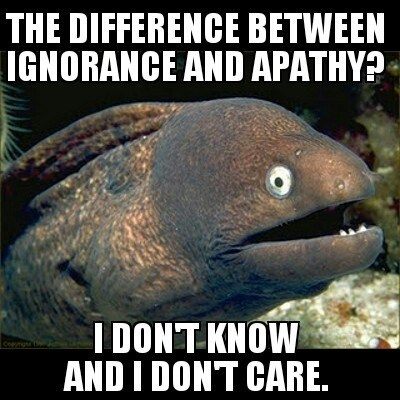 Bad Joke Eel,ignorance,apathy,Memes