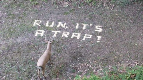 warning deer hunting funny g rated win