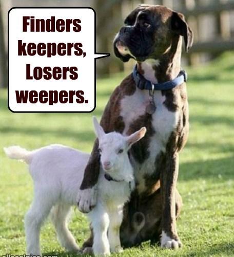 dogs lambs nursery rhyme crying - 7821184000