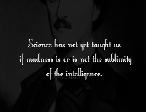 literature,edgar allen poe,science,quote,funny
