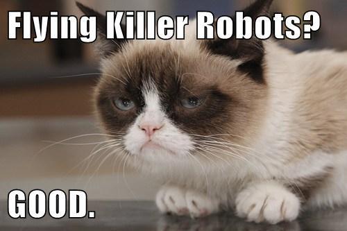 Grumpy Cat,robots,funny