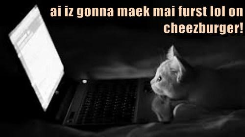 cheezburger cute lolspeak Cats - 7822115584