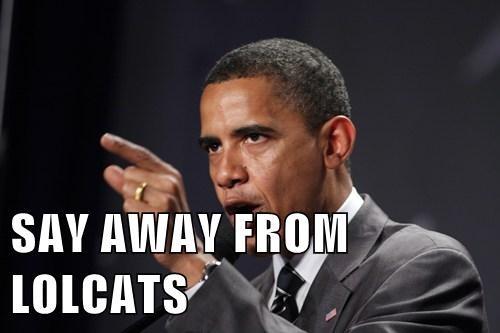 lolcats Democrat barack obama potus - 7822406912