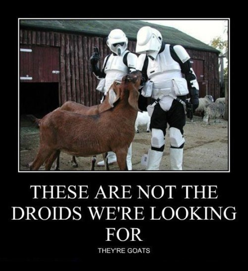 star wars droids goats stormtrooper funny - 7823105024