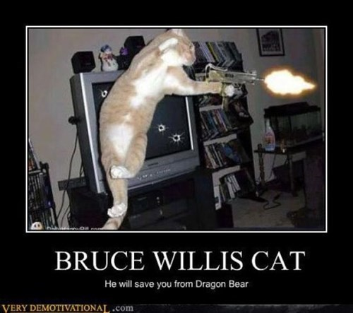 hero cat bruce willis funny - 7823133184
