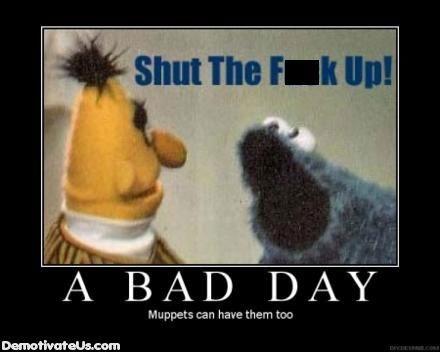 Cookie Monster bert Sesame Street funny - 7823136768
