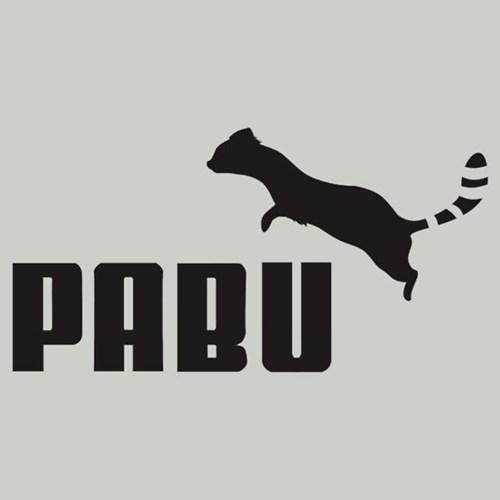 pabu for sale Avatar korra - 7823204864