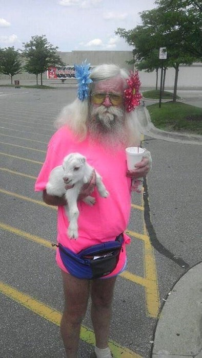 wtf pink goats dad funny - 7823331072