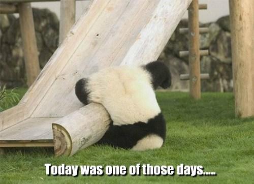 slide panda upside down - 7823613952