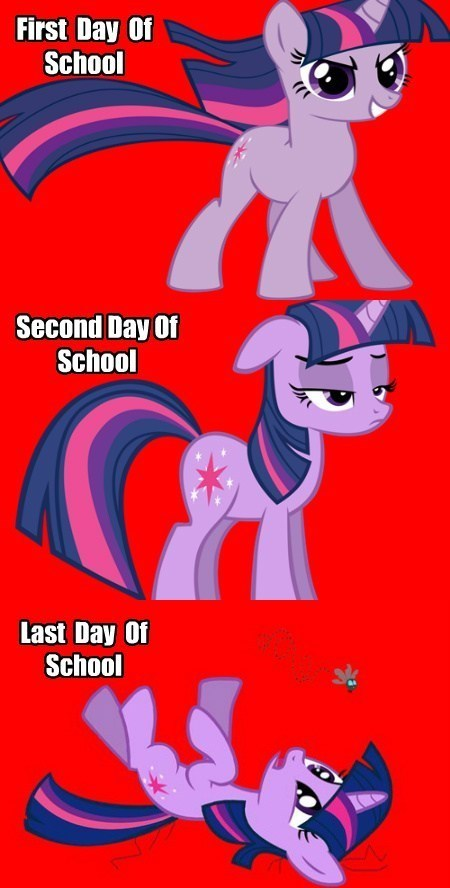 school feels twilight sparkle - 7823739392