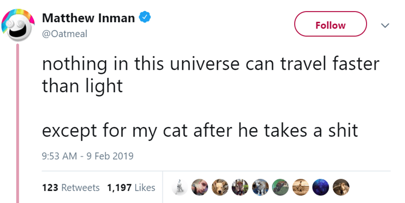 the oatmeal dog tweets cat tweets funny tweets - 7823877