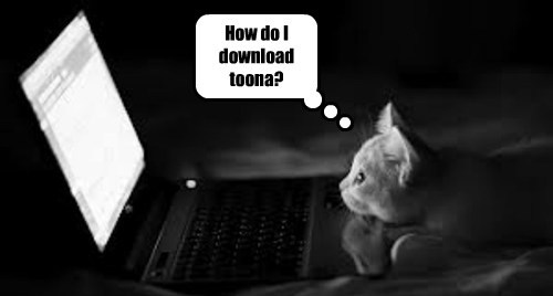 tuna kitten cute download phishing internets - 7824158976