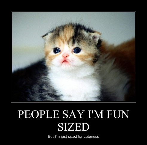 PEOPLE SAY I'M FUN SIZED But I'm just sized for cuteness