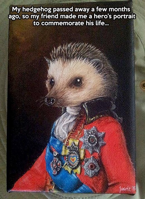 art portraits hedgehogs - 7824837376