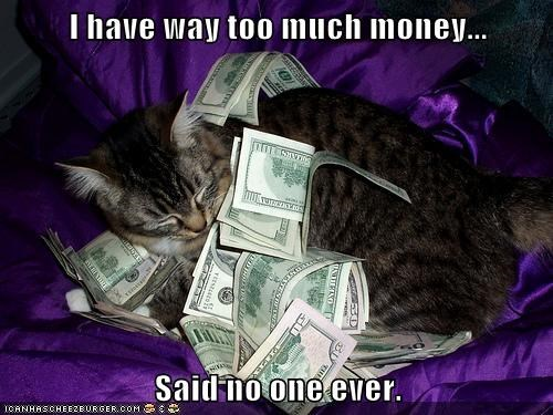 Cats,funny,money,rich