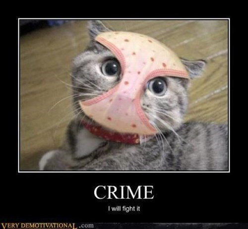 costume disguise cat crime bane - 7824884224