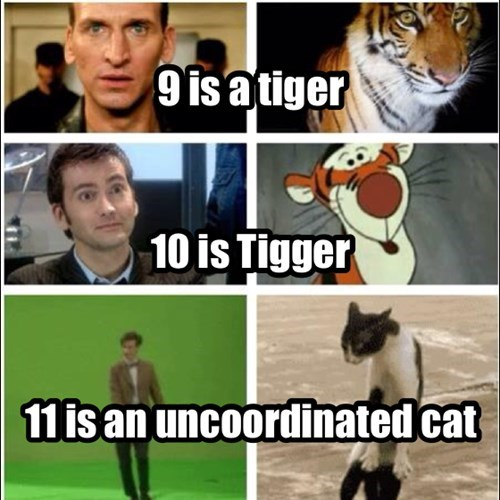 10th doctor,11th Doctor,doctor who,9th doctor,Cats