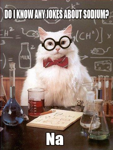 puns,chemitry cat,sodium,science,funny