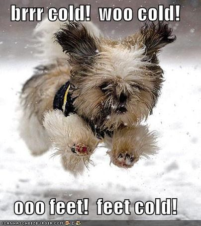 brrr cold!  woo cold!  ooo feet!  feet cold!