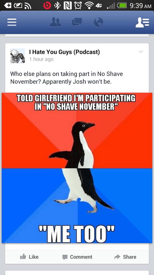 socially awkward penguin funny - 7829467904