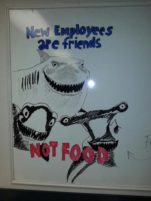 fish are friends not food,employees,finding nemo,interns,monday thru friday,g rated