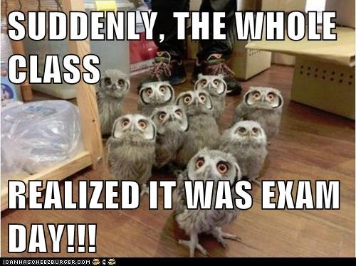 SUDDENLY, THE WHOLE CLASS REALIZED IT WAS EXAM DAY!!!