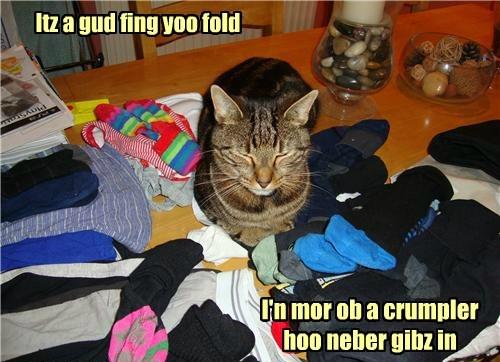 Itz a gud fing yoo fold I'n mor ob a crumpler hoo neber gibz in