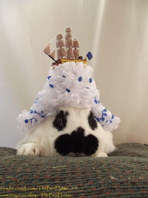 bunnies history cute rabbits - 7829838080