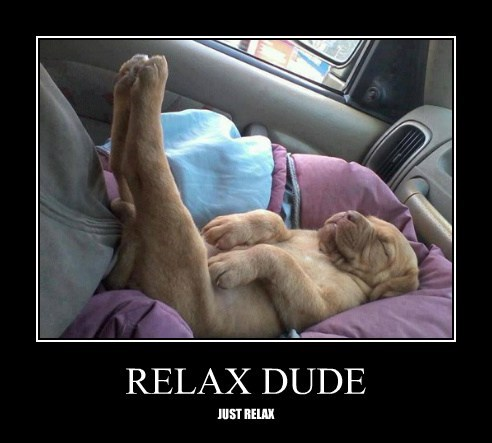 puppies relax comfortable - 7830085632