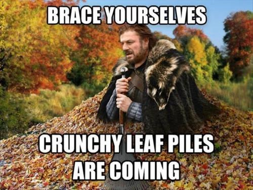 brace yourselves Memes seasons leaves fall