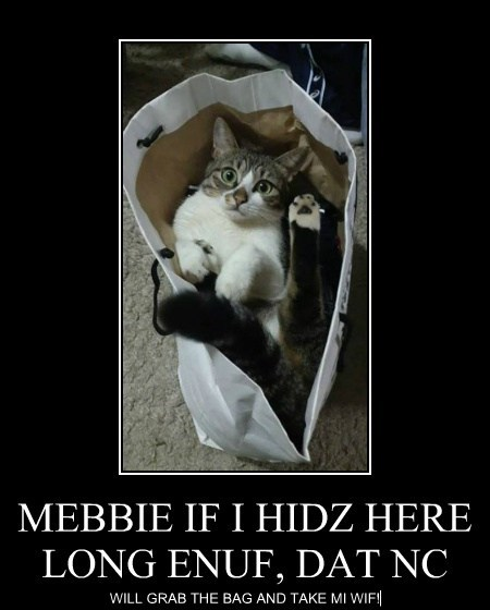 MEBBIE IF I HIDZ HERE LONG ENUF, DAT NC WILL GRAB THE BAG AND TAKE MI WIF!