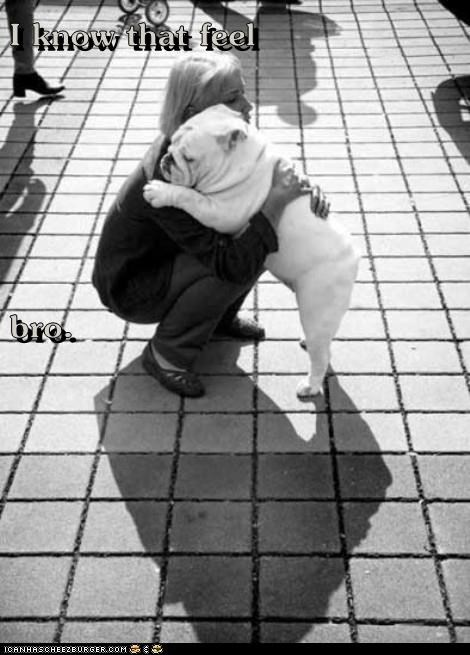 dogs cute hugs empathy - 7831200768