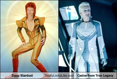 Castor,ziggy stardust,totally looks like,funny,tron