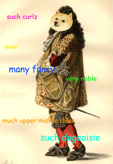 fancy fashion shiba historic