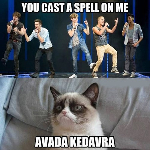 one direction Grumpy Cat avada kedavra