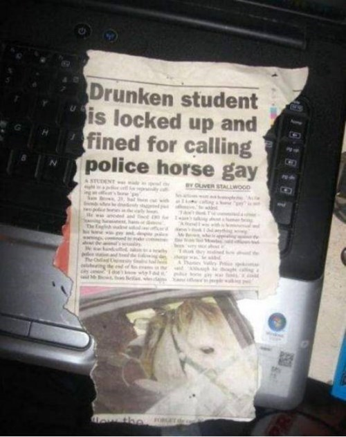offended funny horse police - 7831576576