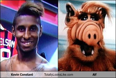 Kevin Constant Totally Looks Like Alf