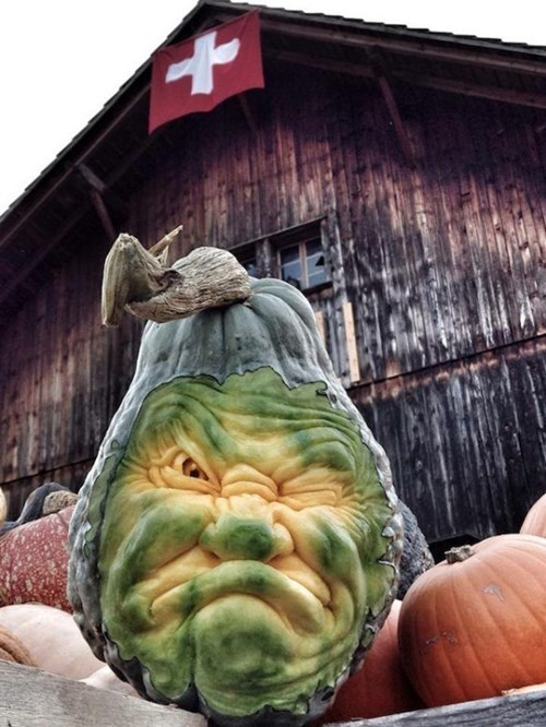 pumpkins,halloween,squash,carving,funny,g rated,win,Spooky FAILs and HalloWINs
