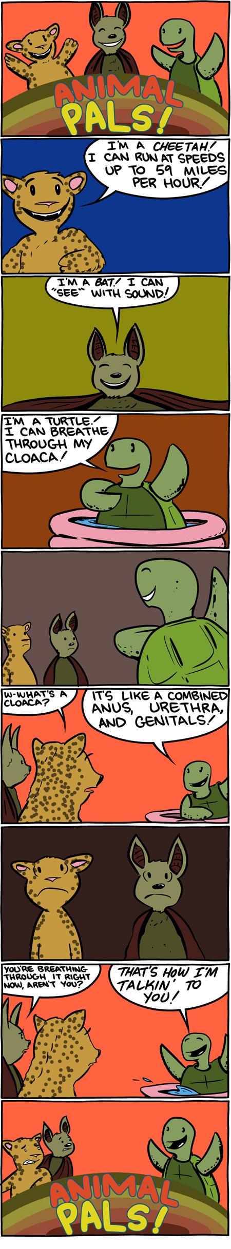 funny animals web comics - 7831813120