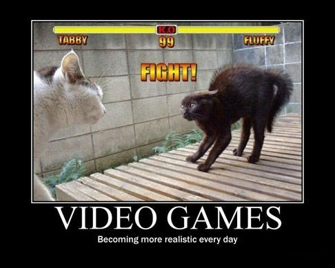 realism fight video games Cats funny - 7831908096