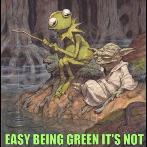 kermit the frog,crossover,star wars,Fan Art,yoda