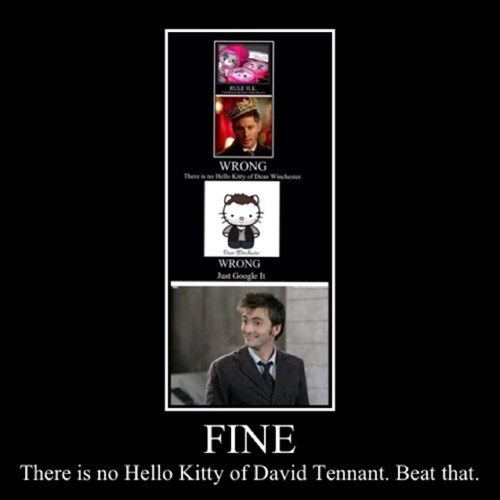 fine David Tennant hello kitty doctor who
