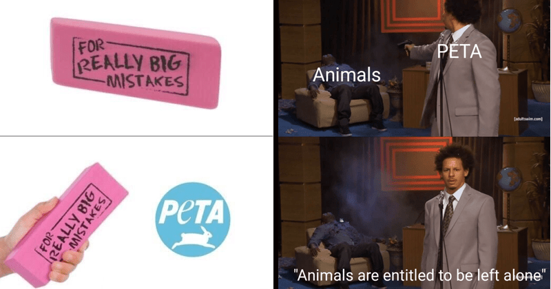 "Funny anti-peta memes, eric andre, steve irwin, funny memes, peta, peta memes | eraser REALLY BIG MISTAKES PETA ifunny.co REALLY BIG MISTAKES | eric andre shooting hannibal Person - PETA Animals adultswim.com ""Animals are entitled be left alone"""