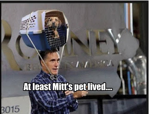 At least Mitt's pet lived....