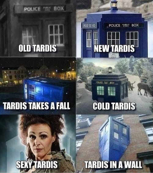 Who Needs a Soft Kitty When You Can Have a Tardis